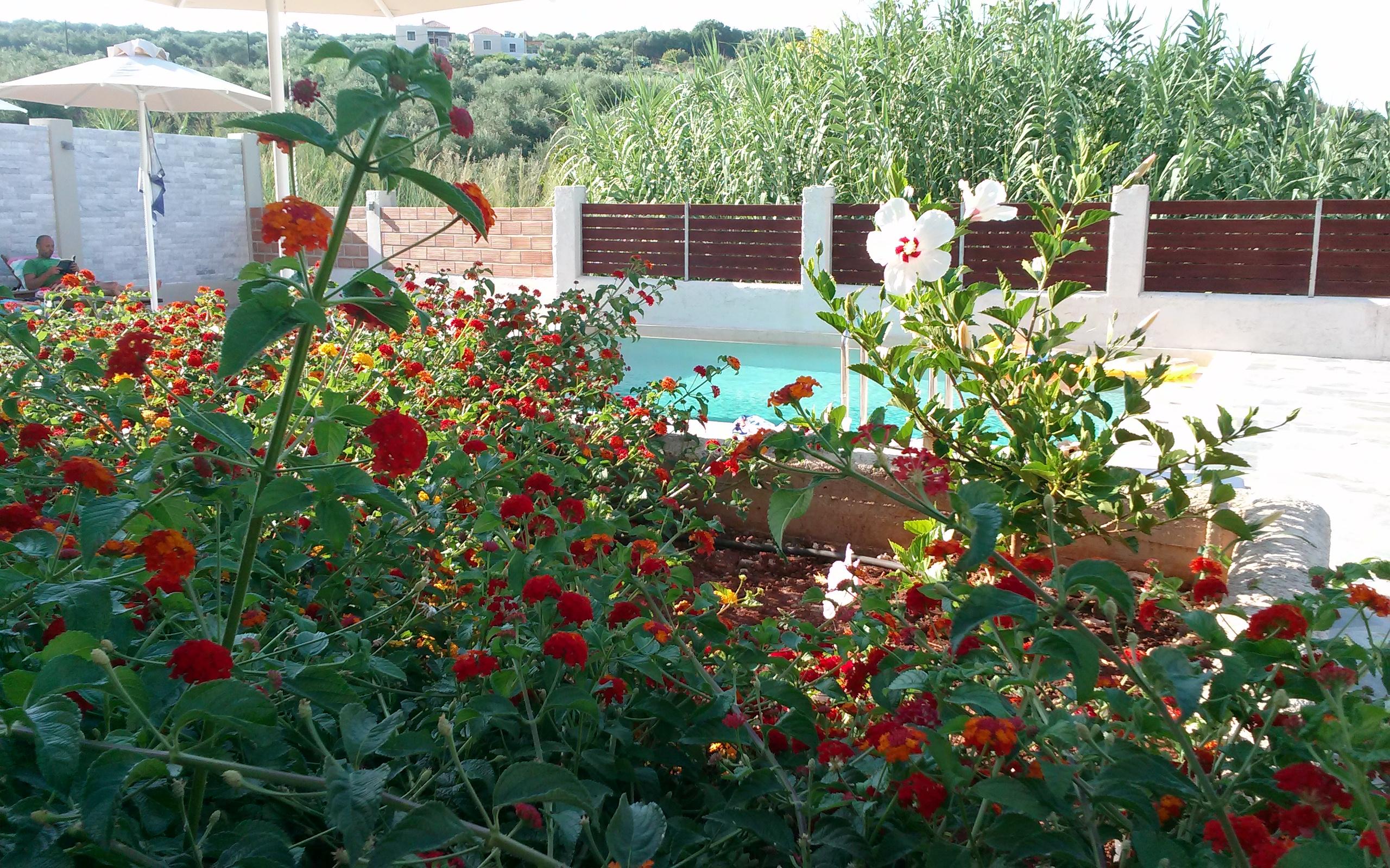 Ferienhaus Villa Katina mit privatem Pool in der Nhe von Almyrida (2125138), Neon Khorion Kriti, Kreta Nordküste, Kreta, Griechenland, Bild 20