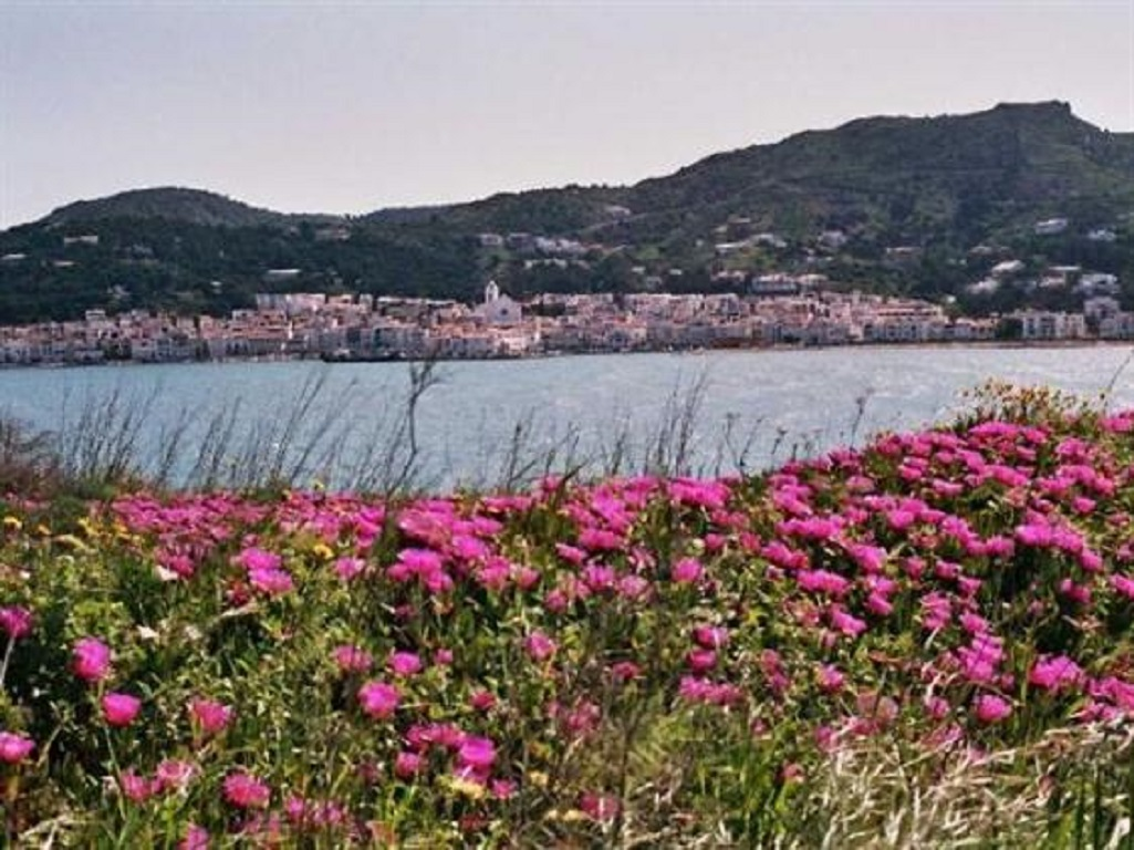 Ferienwohnung Strand Tamariua Costa Brava (2597784), El Port de la Selva, Costa Brava, Katalonien, Spanien, Bild 13