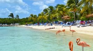 Till Aruba reser Du för att njuta av fina stränder