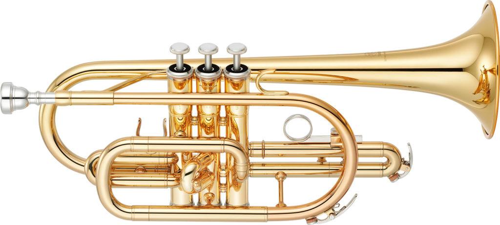 необычные инструменты для джаза корнет JazzPeople
