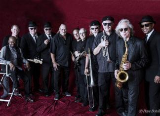 История оригинальных The Original Blues Brothers Band