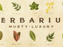 musty luxury - альбом Herbarium