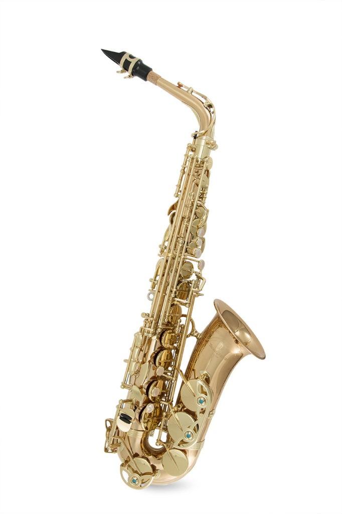 Какой саксофон выбрать: краткий обзор инструментов — Yanagisawa