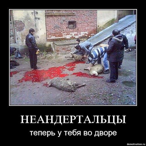 """ТРАГЕДИЯ """"РУССКОГО КОСОВА"""""""