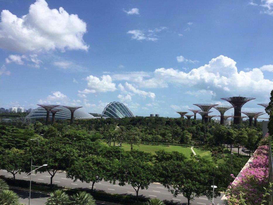 монах Афанасий. Поездка в Сингапур
