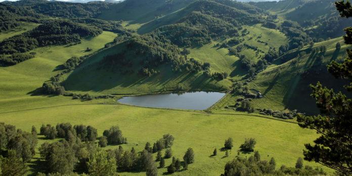 Altai region
