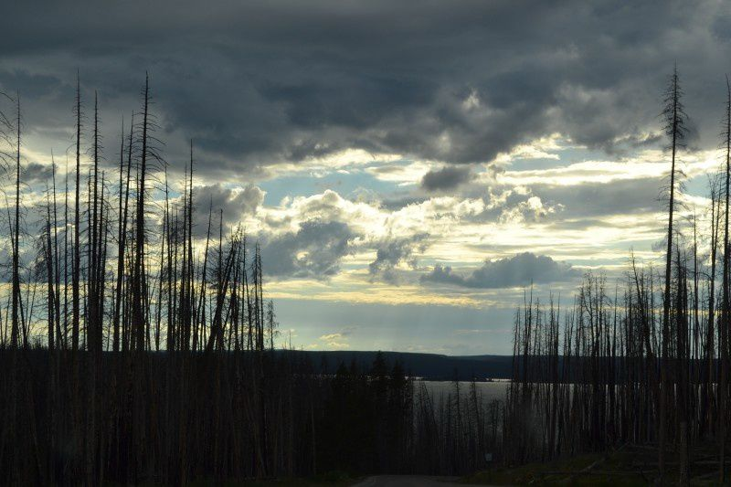 7 diena. Devils Tower – Yellowstone National Park