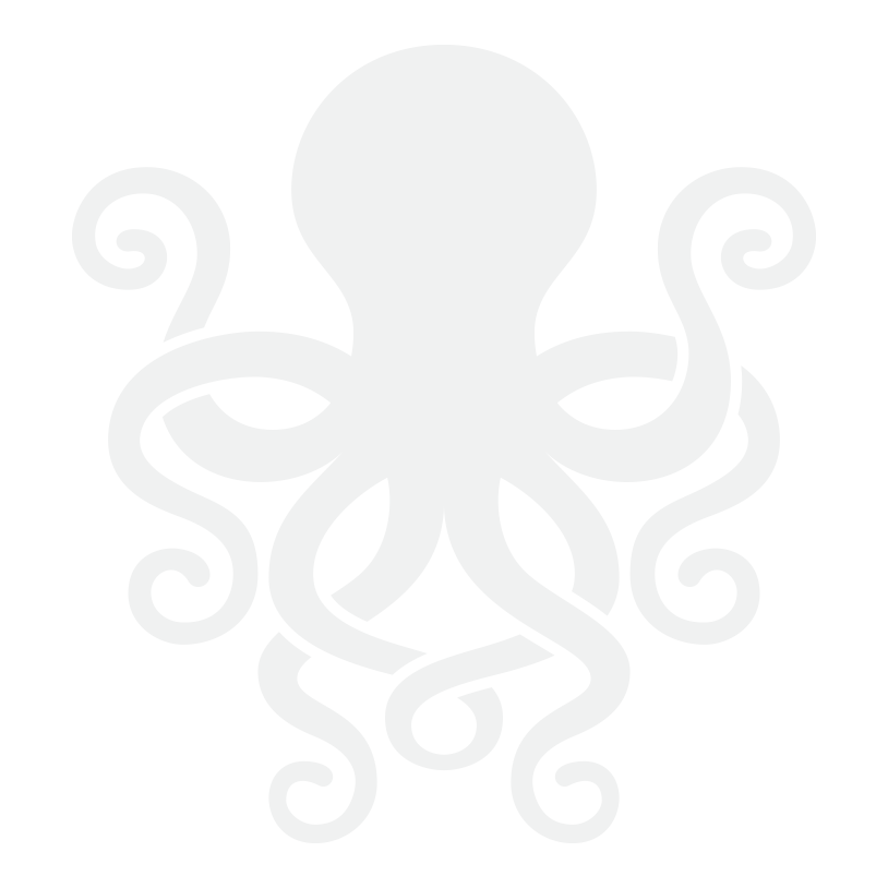 octopus ink network