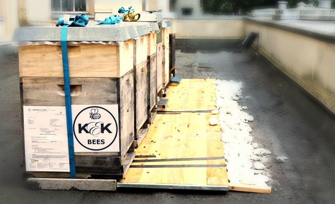 K&K Bienen