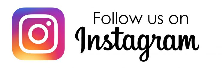 Image result for follow us on instagram icon