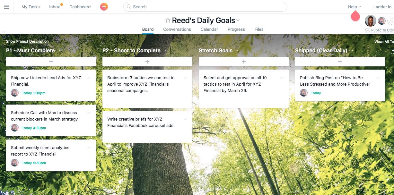 Daily Goals Project Board in Asana