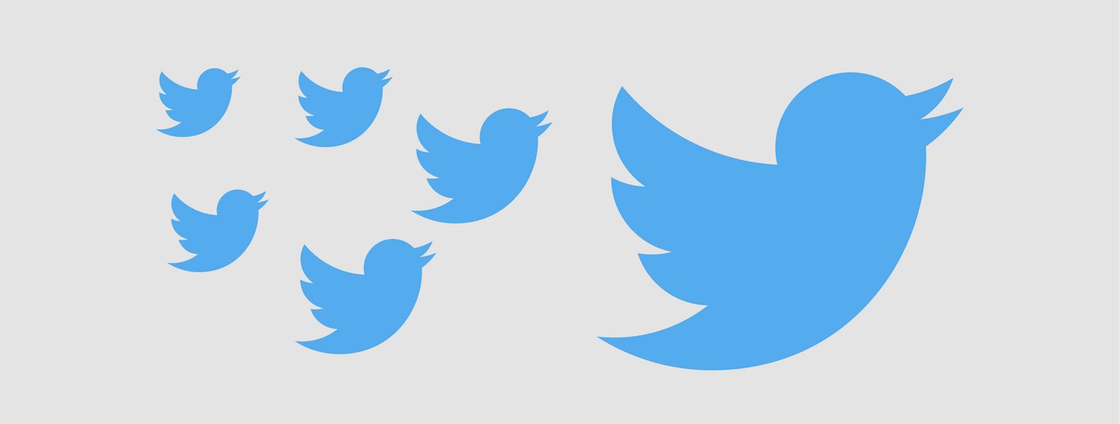 Use Twitter Ads to Gain Exposure and Twitter Followers