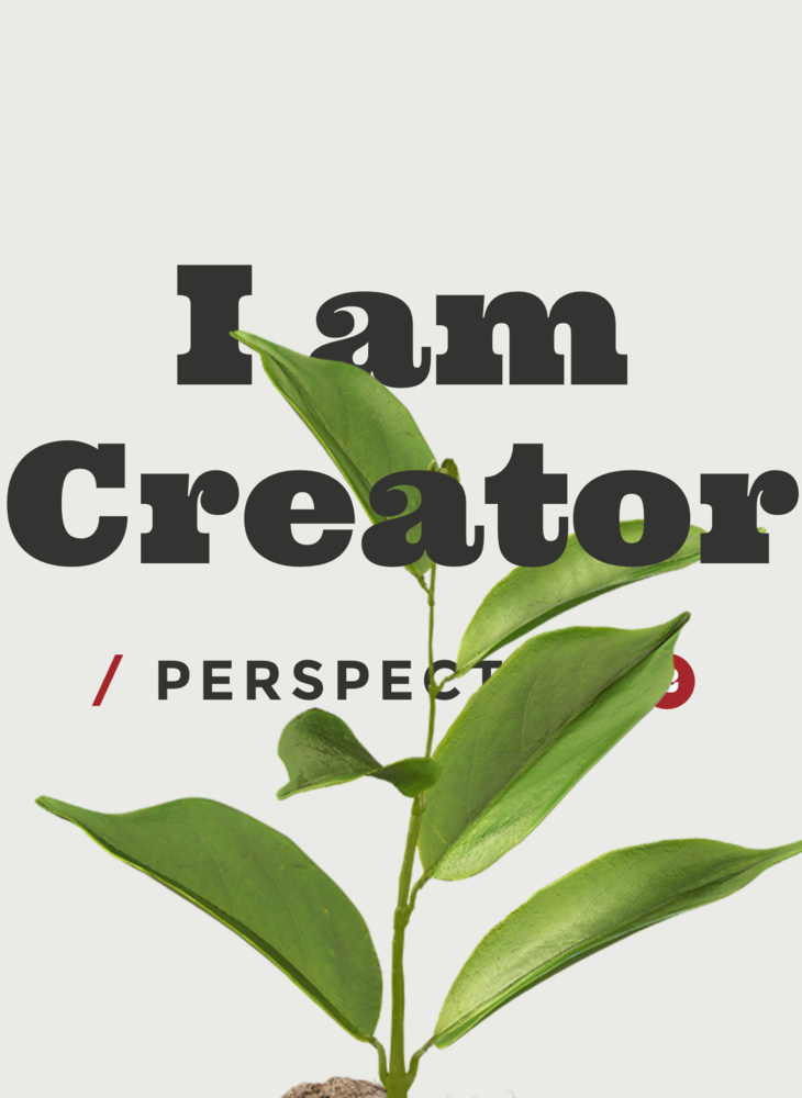 I am Creator / Perspective