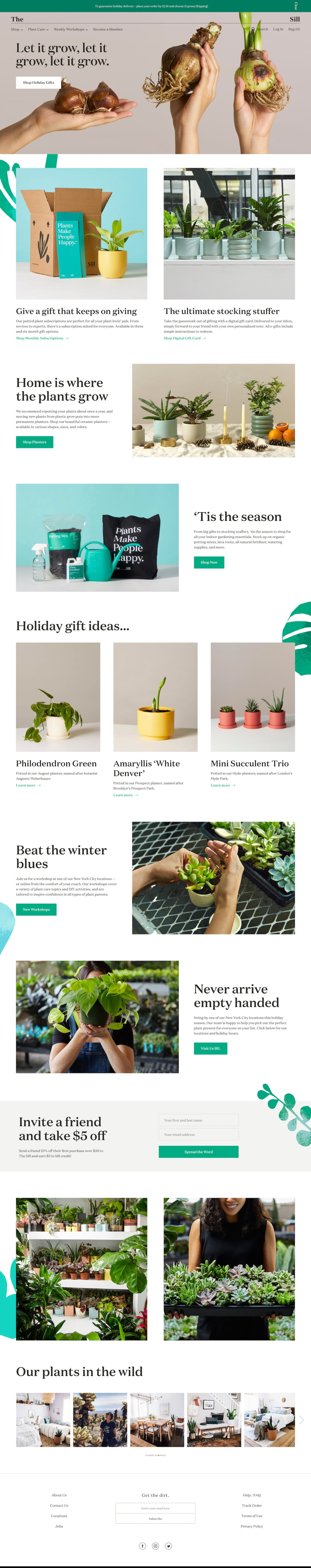 The Sill - Indoor Potted Plants Delivered to Your Door