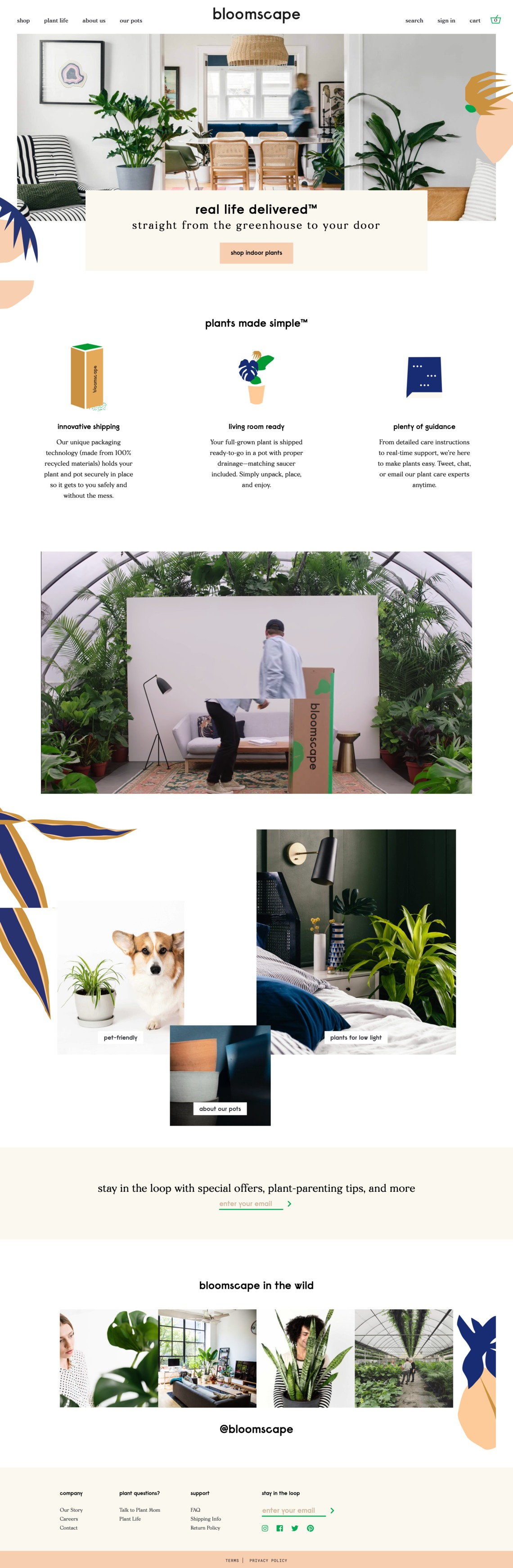 Bloomscape | Living room ready plants delivered to your door