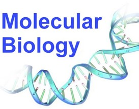 molecular biology lf students