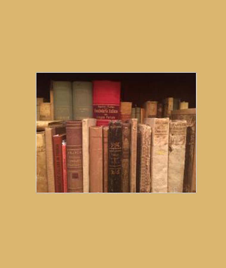 Libreria Dedalo Bosio