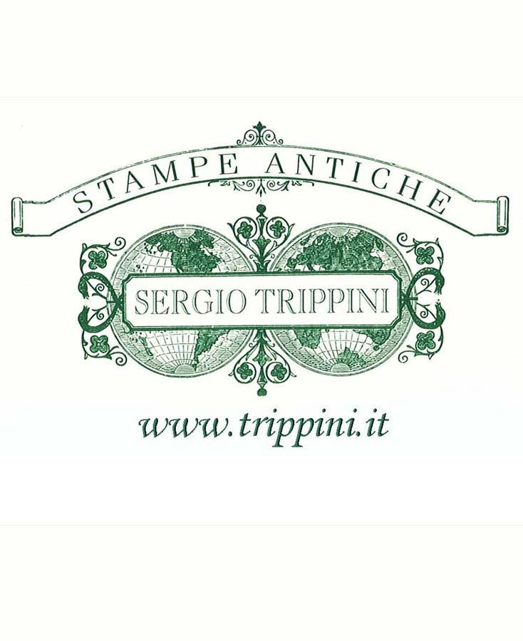 Stampe antiche Sergio Trippini