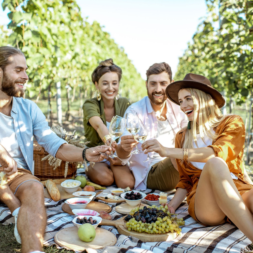 The Vineyard Picnic Experience