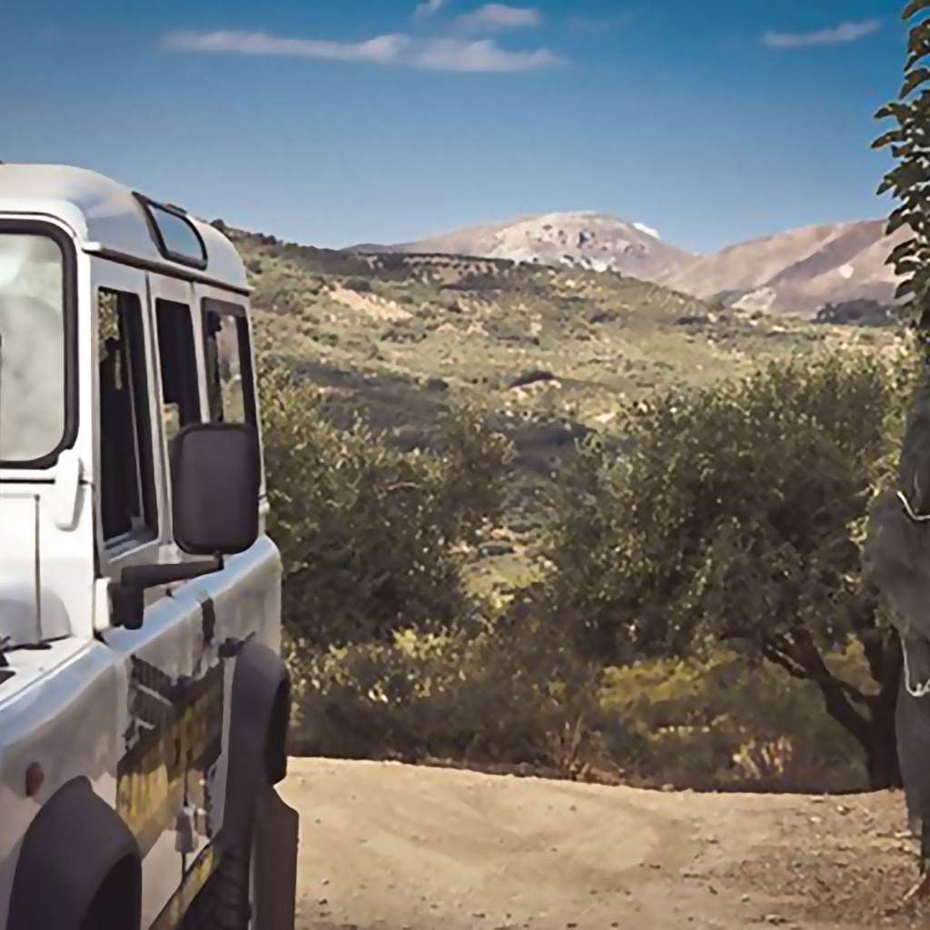 The Cretan Jeep Safari Experience
