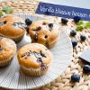 Heerlijke muffins laag in koolhydraten gemaakt van amandelmeel, roomkaas en blauwe bessen.