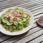 Heerlijke salade gemaakt van kool, komkommer, lente-ui en kip!