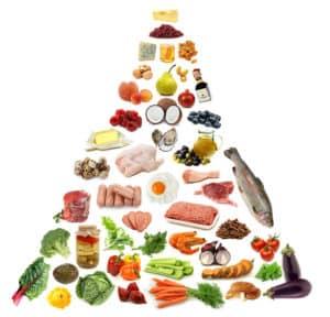 De paleo voedselpiramide