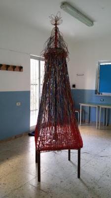 stenio albero