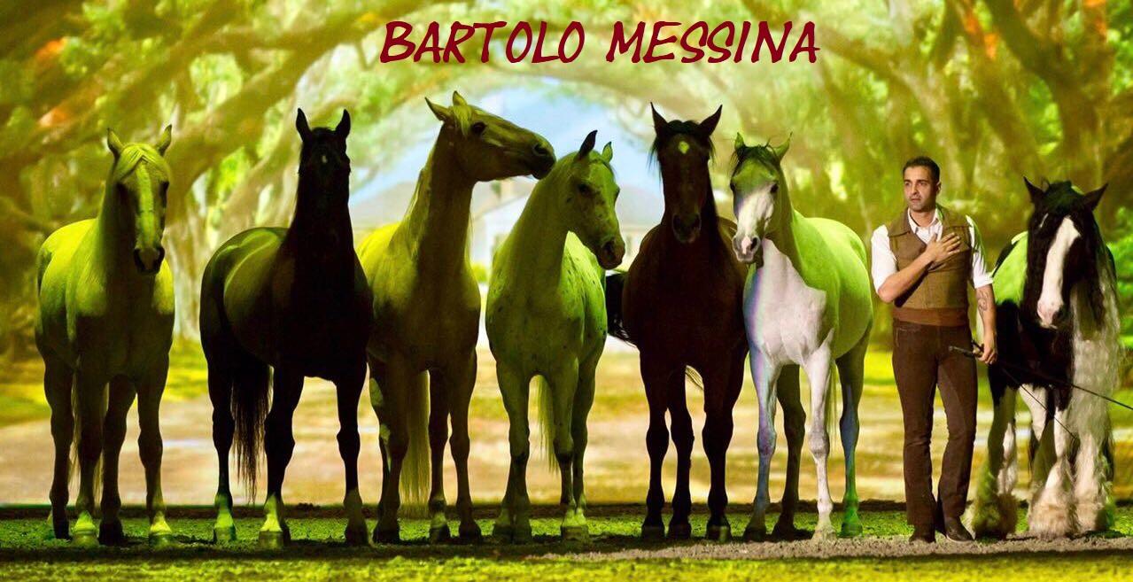 Luomo Che Sussurrava Ai Cavalli Il 12 A Castellana Sicula