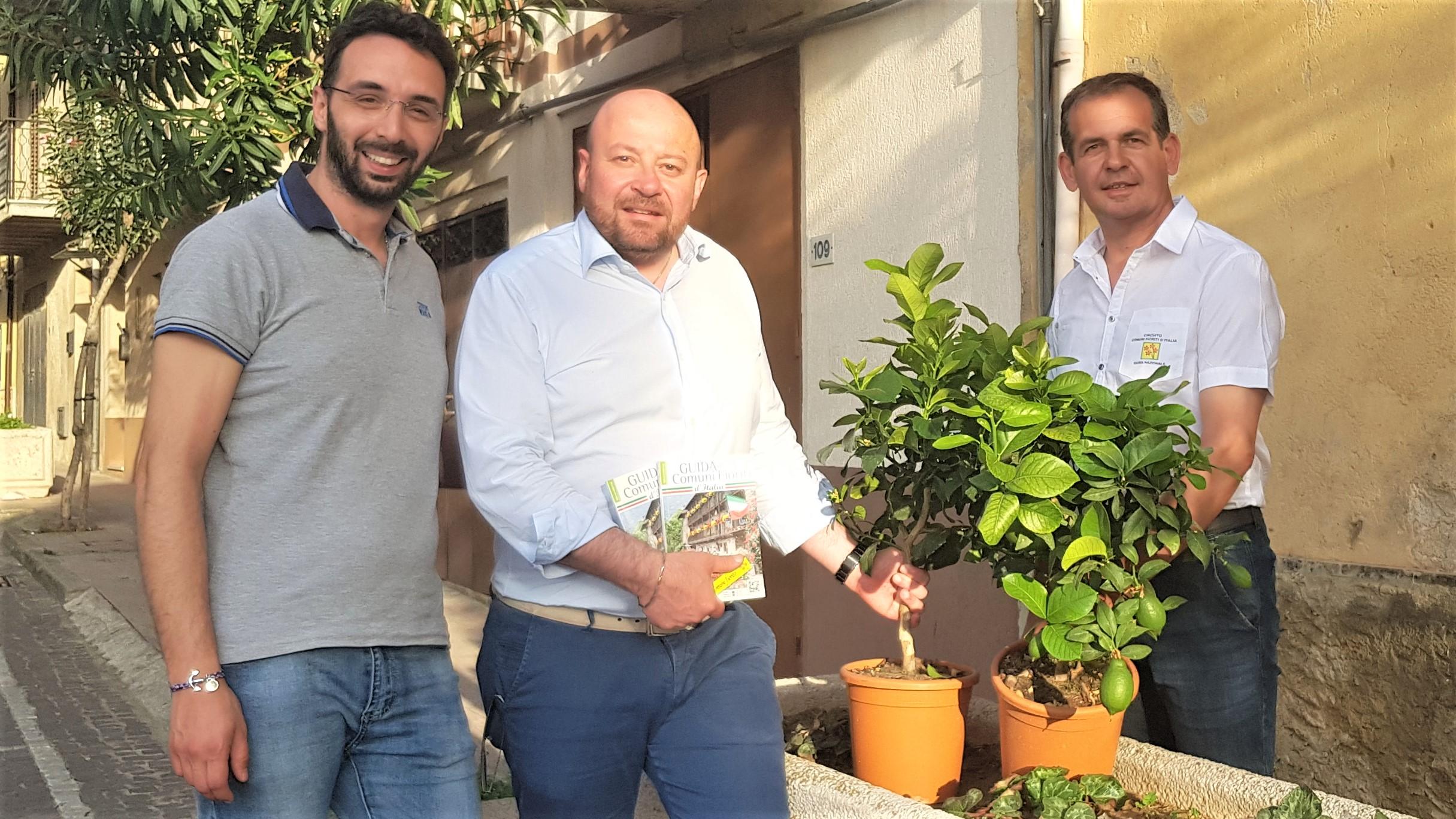 Pettineo michele isgro consegna la guida comuni fioriti for Alberelli ornamentali