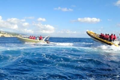 Speedboot Mallorca