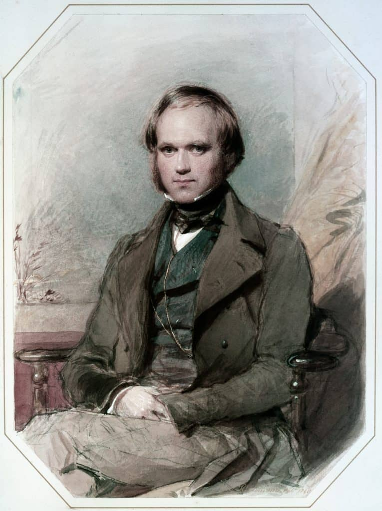 George Richmond - Charles Darwin (late 1830's)