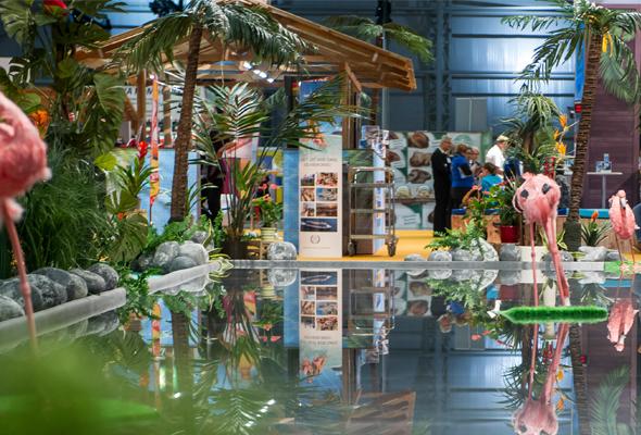 6585e4d61b3 Matka | Press release: Travel Fair to offer adventure in far-away lands