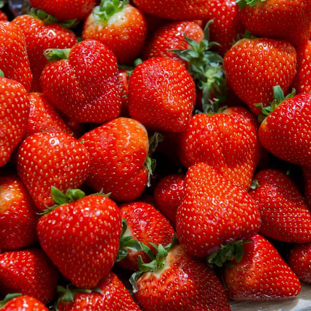 strawberries_1024x1024