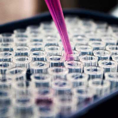 Biotekniikka osana tulevaisuutta