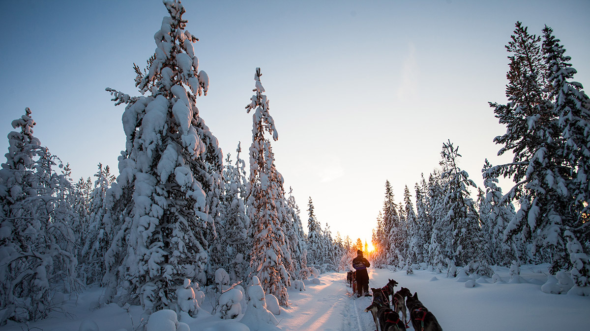 Experience winter Finland at a pre or post tour