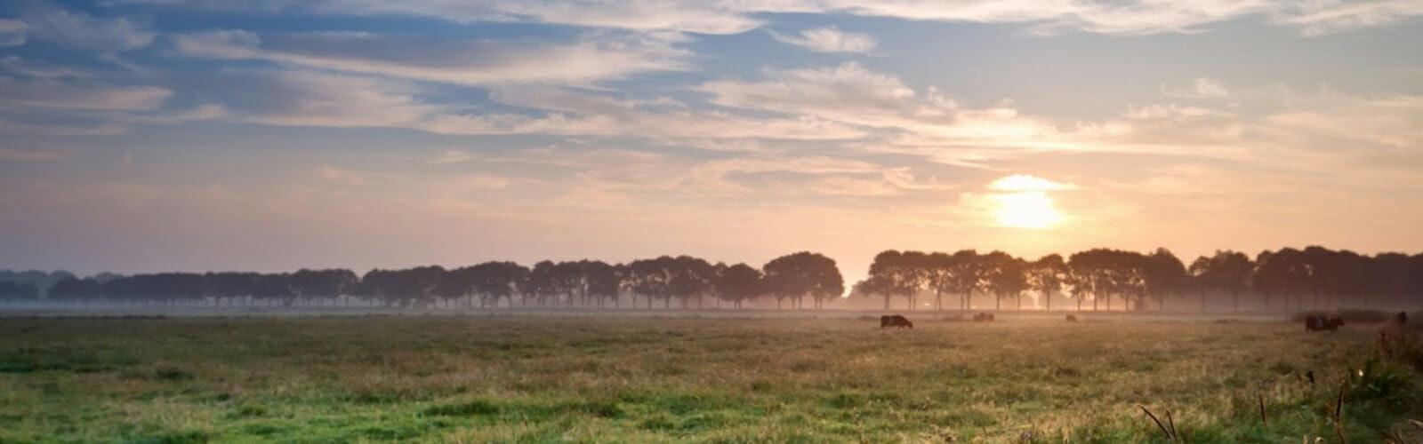 Landelijk wonen Friesland