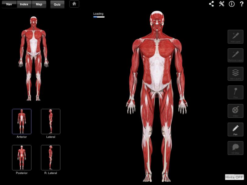 Test: Vilde anatomi-apps til iPad
