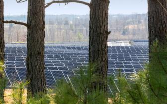 Apple får miljøros af Greenpeace