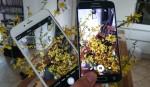 Fotofight – Galaxy S6 Edge vs iPhone 6 Plus