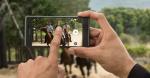 Sony Xperia X Performance – pris, specifikationer og lancering