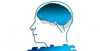 hjerne smartphone