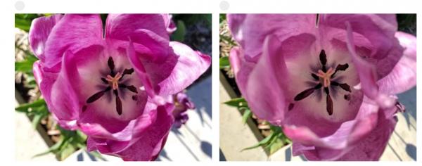 Blindtest: Hvilken mobil tager de bedste billeder?