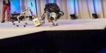 Selv når robotter dummer sig er de menneskelige