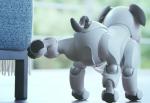 Ny version: Sonys robothund Aibo har kunstig intelligens