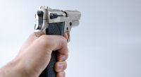 gun pornhub
