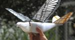 Kina bruger robotfugle til at holde øje med befolkningen