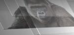 Vanvittigt tyndt Gorilla Glass til foldbare telefoner