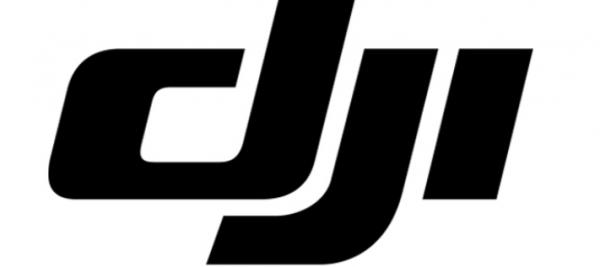 Korruptions-skandale hos DJI betyder tab på 1 milliard kroner