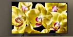 Sony lancerer nye 4K HDR TV-apparater